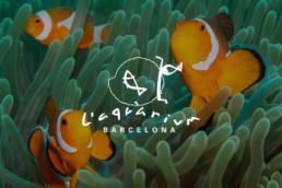 Proyectos Aquarium